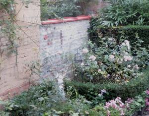 our garden 2.9.15