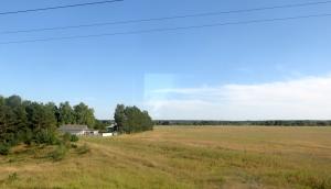 train Orsha-Brest 815 16