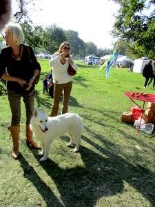 women, dog Aywiers 1015