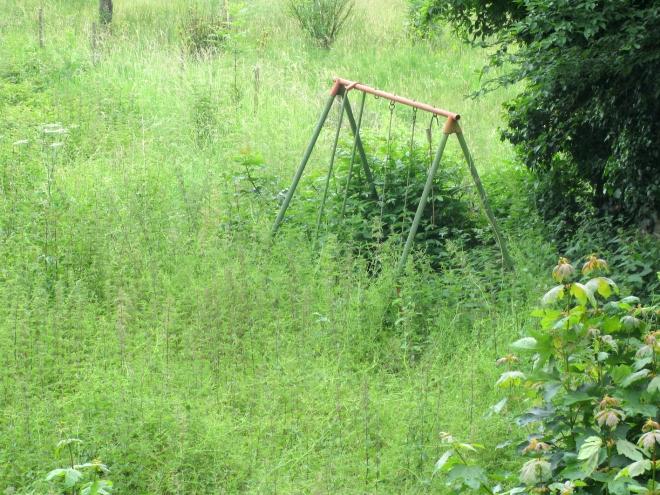 swing in field Godinne 611.JPG