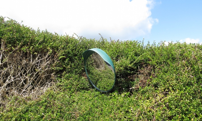 mirror in hedge Studland 715.JPG