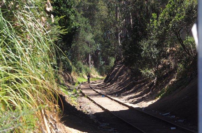man on (disused?) railway tracks Santa Cruz 818.JPG