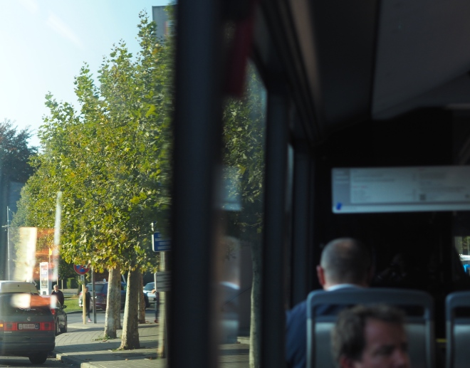 plane trees bus Schuman-airport 1018 3.JPG